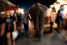 Sasithon Pooviriyakul Photography: Chonburi Night Market