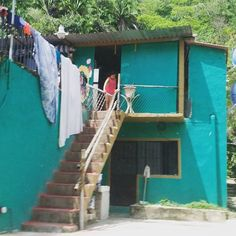 Otra casa en la selva #SXTNvida