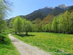 Un país para recorrérselo: Andorra, un país para recorrérselo: Ruta del Ferro...