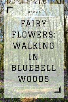 Walking in bluebell woods.   #bluebells #spring #britishwoodland #woodlandwalks #blogger #blog #lifestyleblog #britishblogger #lifestyle