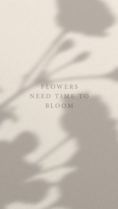 Flowers need time to bloom Motivacional Quotes, Mood Quotes, Positive Quotes, Life Quotes, Sun Quotes, Positive Motivation, Short Quotes, Beige Aesthetic, Quote Aesthetic
