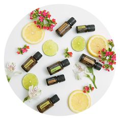 Squeeze the day with doTERRA& citrus oils! Orange you glad that there are so many to choose from? Essential Oils For Pain, Frankincense Essential Oil, Essential Oil Blends, Citrus Essential Oil, Doterra Motivate, Homemade Shampoo, Citrus Oil, Doterra Essential Oils, Simple Syrup