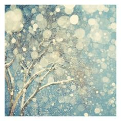 Winter Photography, Tree, Snowflakes, Snow, Blue, White, Abstract... ❤ liked on Polyvore featuring backgrounds, winter, pictures, photos, christmas, embellishment and detail