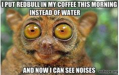 Ok not that I drink coffe but sometimes I feel this way when the store only has 8 oz and 16oz redbulls instead of 12oz. I cant go with less so I drink the whole 16 haha