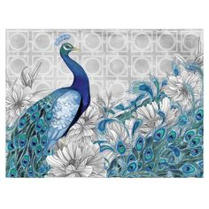 Peacock Canvas Print II