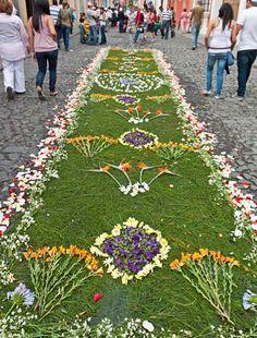 Alfombra de flores Guatemala