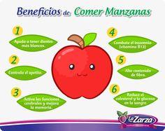 Beneficios de comer manzana. #Manzana #salud #Infografía