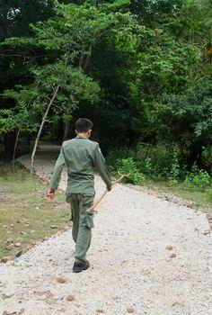 Hunting Komodo Dragons on Komodo Island - the traveloguer