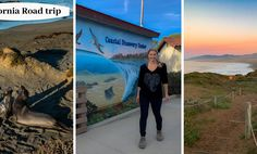 A highway 1 road trip is a must for visitors to California. Drive through the central coast to experience the best activities on a california roadtrip. Bishop Peak, Moonstone Beach, Laying On The Beach, San Simeon, San Luis Obispo County, Highway 1, Trail Maps, California Coast, Big Sur