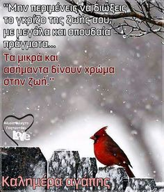 Happy Morning, Good Morning, A Kon, Greek Quotes, Freedom, Movie Posters, Poetry, Pictures, True Words