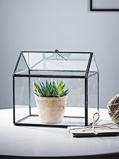 house shaped home accessories, glass house display box Terracotta, Modern Country Bedrooms, Plant Cages, Fitted Bedroom Furniture, Cactus, Glass Furniture, Furniture Design, Glass Terrarium, Metal Trim