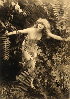 .Woman versus ferns1