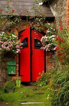 Kinsale, County Cork, Ireland. Love the RED DOOR! And the flowers!