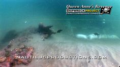Blackbeard's Shipwreck Site! One of our favorite videos as archaeologists dredge & recover artifacts from the Queen Anne's Revenge - Blackbeard shipwreck site. Video here - https://www.youtube.com/watch?v=w8Z05lM7gYo. The large anchor and most of the ballast pile have been removed since this video was shot in 2008.  #Blackbeard #QueenAnnesRevenge #NautilusProductions #Pirates #EdwardTeach #Archaeology #QARrrgh #shipwreck