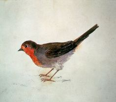 Joseph Mallord William Turner (English, 1775-1857) Robin, from the Farnley Book of Birds, c.1816. Oil on canvas.