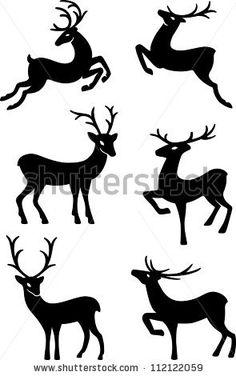 Stag Stok Fotoğraflar, Görseller ve Resimler | Shutterstock