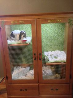 Cabinet Bunny Hutch   9 DIY Rabbit Hutch Ideas Using Upcycled Furniture , see more at: http://diyready.com/diy-rabbit-hutch-ideas/