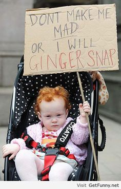Funny ginger sayings - Funny Pictures, Funny Quotes, Funny Memes, Funny Pics, Fails, Autocorrect fails