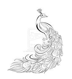 Peacock Motif - Vector by *IrishPirateQueen on deviantART
