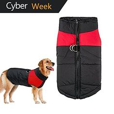 Amazon.com : NO DOGS (Not good with other dogs) Orange Color Coded Non-Pull Front and Back D Ring Padded and Waterproof Vest Dog Harness PREVENTS Accidents By Warning Others Of Your Dog In Advance (L) : Pet Supplies
