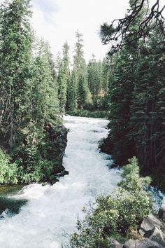 leaberphotos: Tumblr - Instagram - Flickr : expressions-of-nature