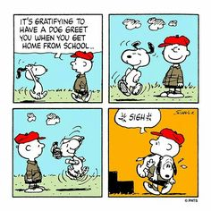 Charlie Brown and Snoopy funny comic strip! Snoopy Comics, Snoopy Cartoon, Peanuts Cartoon, Peanuts Snoopy, Peanuts Comics, Happy Comics, Cartoon Humor, Cartoons, Sally Brown