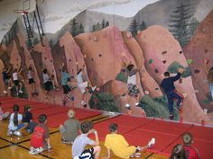 My kids will go to a school with a climbing wall:)