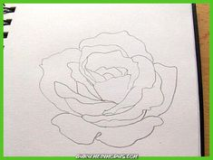 So zeichne ich eine Rose - Monika Kunze - Upload Box Watercolor Pencils, Watercolor Art, Ceramic Painting, Painting & Drawing, Web Paint, Drawing Tutorials For Beginners, Easy Paintings, Learn To Draw, Easy Drawings