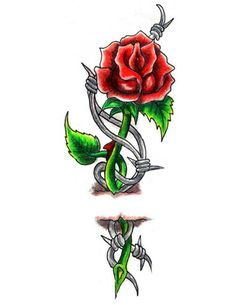 roses tattoo designs | classic rose and barbed wire tattoo ...
