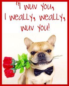 """""""I Wuv You, I Weally, Weally, Wuv You"""", French Bulldog Valentine.❤️"""