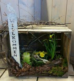 Weinkiste Holzkiste Frühling