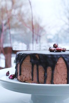 Chocolate cake by gastrolin