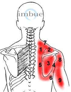Shoulder Pain | Imbue Pain Relief Patch