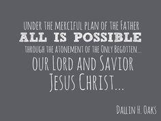 YW Plan of Salvation