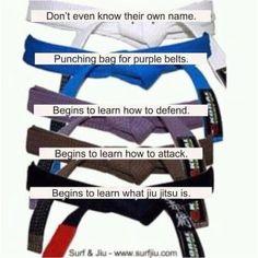 this is the BJJ Brazilian Jiu Jitsu belt system, but I'm laughing because this is true for every martial arts, getting past the punching bag phase is the hardest part. Judo, Hapkido, Carlos Gracie, Jiu Jitsu Quotes, Karate Shotokan, Jiu Jutsu, Bjj Memes, Jiu Jitsu Training, Karate Training