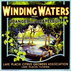 Lake Placid Florida Winding Waters Orange Citrus Fruit Crate Label Art Print
