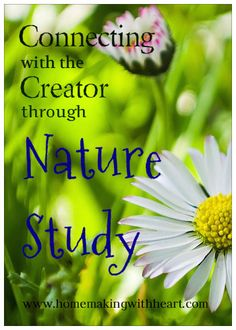 Connecting with the Creator Through Nature Study. homemakingwithheart.com