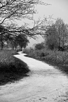 Road at han-river