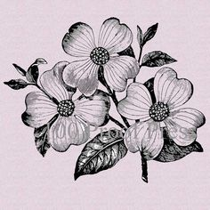 Dogwood Flower Bloom Rubber Stamp 3815T by 100ProofPress on Etsy, $8.00