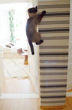 DIY | Katzen-Kletterwand Ikea Hack