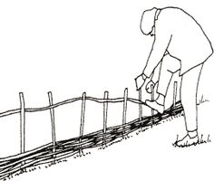 A nice how-to on building your own wattle/hurdle fencing from branches.