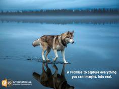 #PhotographySkills Best lightning and perfectly captured. #photographer #TuesdayThoughts #photocontest #photography