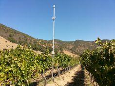 #Controlheladas Nuestros transmisores soportan hasta 4 sensores diferentes por punto de medición.