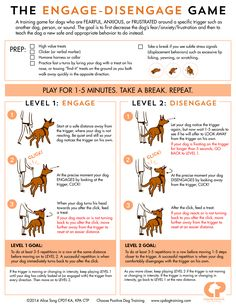 The Engage-Disengage Game is a great way to help reactive dogs cope with their triggers.