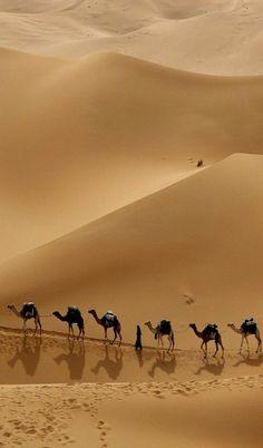Desert trail..