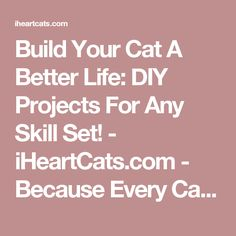 Build Your Cat A Better Life: DIY Projects For Any Skill Set! - iHeartCats.com - Because Every Cat Matters ™