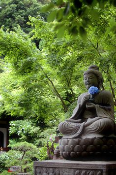 Hasedera temple, Kamakura, Japan