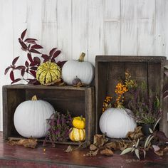 Nothing makes seasonal decorating easier than vintage wooden crates. In fact, decorating in general is easy with vintage crates. They make excellent storage, Vintage Wooden Crates, Vibrant Colors, Colours, Shabby Chic Style, Uk Fashion, Home Decor Inspiration, Seasonal Decor, Porch, Blog