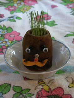 Hairy Potato Head  -Large potato  -Cotton balls   -Small bowl or shallow dish   -Any quick growing grass seed   -Paring knife   -Spoon or melon baller   -Items that will stick into the potato to create a face
