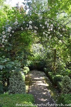 Pathway - Scenes From The Garden Of Ryan Gainey